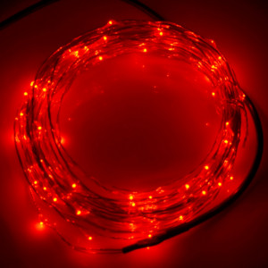 10m 12V 6W 500LM SMD-0603 LED Silver Wire String Light Festival Lamp / Décoration Light Strip, Red Light S1120R5-20