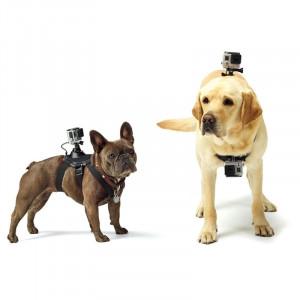 PULUZ Hound Dog Fetch Harness Montant réglable de la poitrine pour GoPro HERO5 / 4 Session / 4/3 + / 3/2/1 (Noir) SPU1563-20