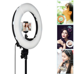 Lampe de poche à DEL avec anneau retardateur pour photographie, prise d'ancrage 12 pouces SH005487-20