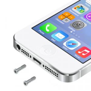 20 PCS iPartsAcheter les vis d'ancrage d'origine pour iPhone 5 / 5S (argent) S2084S533-20