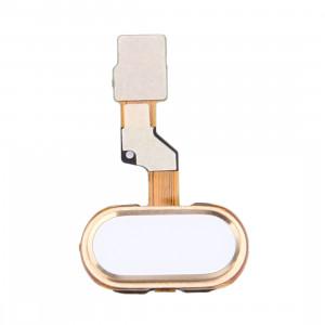 iPartsAcheter pour Meizu M3s / Meilan 3s Capteur d'Empreinte Flex Câble (Or) SI565J598-20