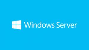 Microsoft Windows Server 2019 Licence 5 user CALs OEM English XI2284729N1702-20