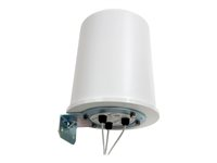 Hewlett Packard Enterprise HPE Antenna 10 dBi omni-directional outdoor for HPE MSM466-R Dual Radio Outdoor 802.11n Access Point XP2175319G561-20