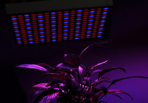 Panneau 225 LEDs de croissance 165 rouges + 60 bleues / 45W / Longévité de 50.000 heures CS9179-01